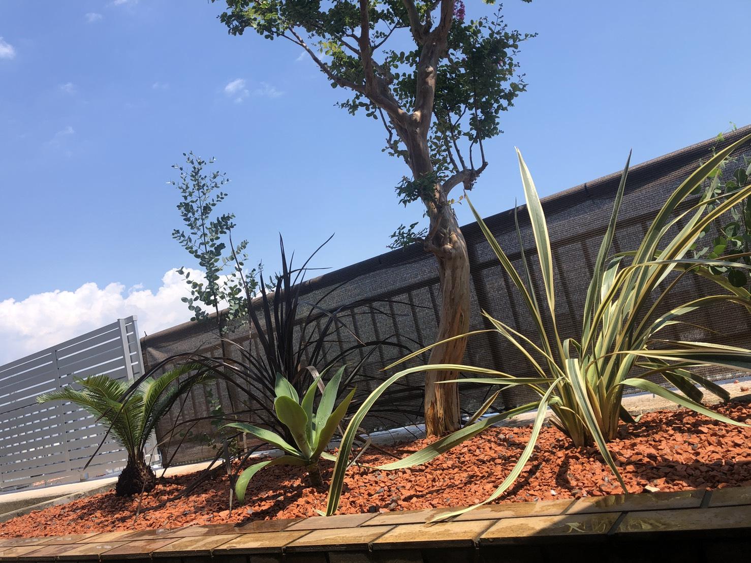 植栽デザイン|花壇の植え替え工事05